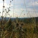 R_Landschaft2_IMG_7209_2016_08_31_Glavace
